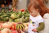 Dziecko dotknąć dynia — Zdjęcie stockowe