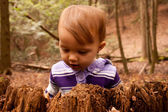 Child Woods Discover — Stock Photo