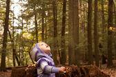 Вудс ребенка искать — Стоковое фото