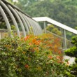 Singapore overpass — Stockfoto