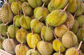 Durian Fruit — Stock Photo