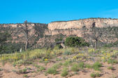 Spring in the Bangs Canyon recreation area near Grand Junction — Stock Photo