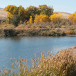 Shores of the Colorado River near Fruita — Stock Photo