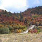 Ridgway Valley in Autumn — Stock Photo