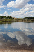 Cloud Reflections in a still lake — Stock Photo