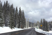 Highway 65 after an Early Snow — Stock Photo