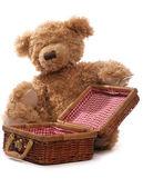 Piquenique de ursos de pelúcia — Foto Stock