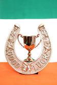 Luck of the Irish Trophy — Stock Photo