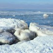 Stock Photo: Ice coast