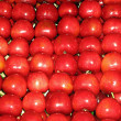 Box red cherries on sale at the organic market — Stock Photo