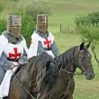 Stock Photo: Two medieval crusaders shall strutting