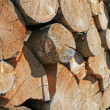 Royalty-Free Stock Photo: Logs cut a huge outdoor summer Woodshed