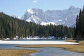 Bright and beautiful alpine lake Misurina — Stock Photo