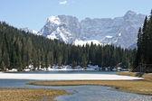 Bright and beautiful alpine lake Misurina — Stock Photo