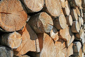 Logs cut a huge outdoor summer Woodshed — Stock Photo