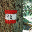 Indications of mountain path number eighteen in tree — Stock Photo #8837367