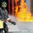 Firefighters extinguished a fire hazard during a training exercise in the f — Stockfoto #8841005