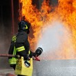 Firefighters extinguished a fire hazard during a training exercise in the f — Stock Photo #8841032