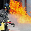 Firefighters extinguished a fire hazard during a training exercise in the f — Stock Photo #8841056