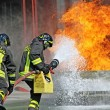 Stock Photo: Firefighters extinguished fire hazard during training exercise in f