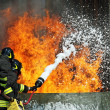 Firefighters extinguished a fire hazard during a training exercise in the f — Stock Photo #8841103
