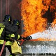Firefighters extinguished a fire hazard during a training exercise in the f — Stock Photo #8841119