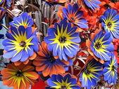 Blue wooden flowers handmade in italian retail market — Stock Photo
