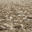 Stock Photo: Brown clods of arable field