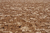 Brown clods of earth in a field just plow — Stock Photo