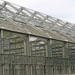 Steel and glass greenhouse for growing plants — Stock Photo #9856259