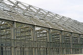Steel and glass greenhouse for growing plants — Stockfoto