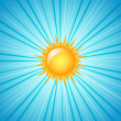 Big shining sun — Vector de stock #8495776