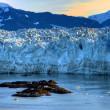 Sunrise & Hubbard Glacier Rocks — Stock Photo
