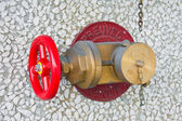 Copper hydrant with one valve — Stock Photo