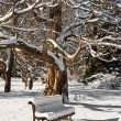 Place of meditation in winter — Stock Photo
