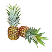 Two pineapples on white — Stock Photo