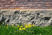 Brick and stone wall, grass and dandelions — Stock Photo