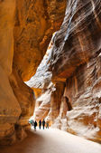 The Siq, the narrow slot-canyon, the entrance passage to the hidden city of — Stock Photo