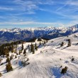 Stock Photo: AustriAlps ski slope with trees