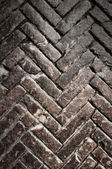 Brick pavement vintage texture — Stock Photo