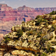 Grand canyon cliff with small — Stock Photo #8612071