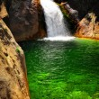 Stock Photo: Waterfall with green water in King's Canyon