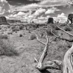 Памятник вид на долину черно-белый пейзаж — Стоковое фото