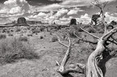 Monument valley black and white landscape view — Stock Photo