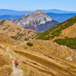 Stock Photo: Slovak mountains trekking path in MalFatra
