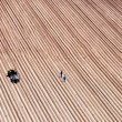 Stock Photo: Agriculture field lines and two farmers with tractor
