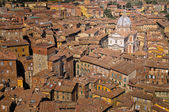 Siena roof tops and cathedral view, Tuscany, Italy — Stock Photo