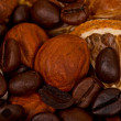 Royalty-Free Stock Photo: Coffee beans and nuts
