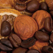 Coffee beans and nuts - Stock Photo