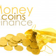 Money coins in golden bag isolated on white - Stock Photo